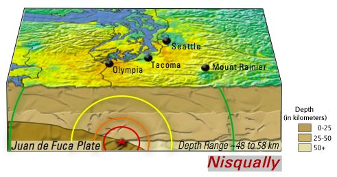 Earthquake Shaking Putting Down Roots In Earthquake Country